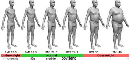 indeks telesnee mase