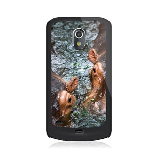 Samsung Galaxy Nexus 4G