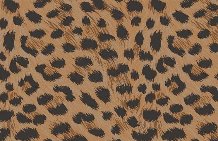 Kako se kombinuje odeća sa životinjskim printom