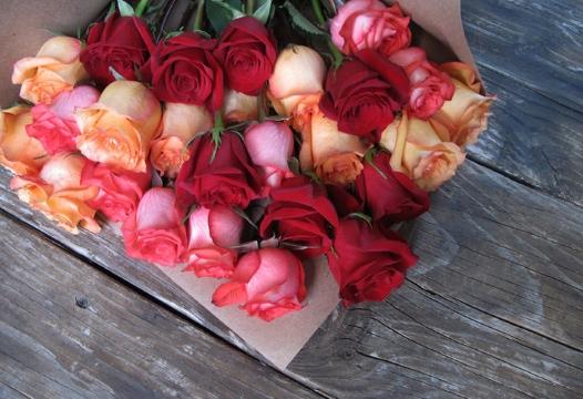 Ruže svih boja osim crvene