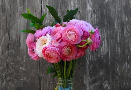 Vaš omiljeni cvet