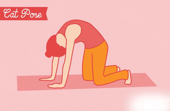 yoga vezbe  Poza mačka/krava