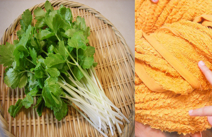 celer za kosu